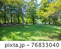 山の公園でバーベキュー 男のアウトドア 76833040