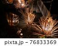 ヨシの光と湖 西の湖ヨシ灯り展 76833369