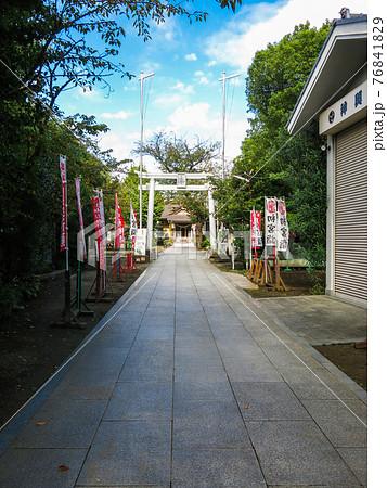 参道から見た神社の鳥居と本殿 76841829