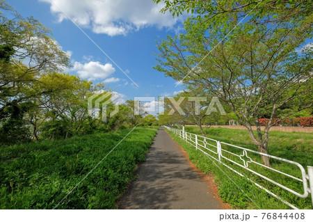 印旛沼のサイクリングコース 76844408
