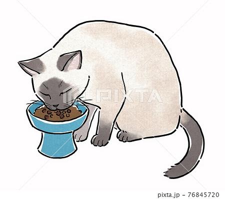 餌皿からキャットフードを食べるシャム猫 76845720