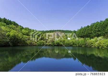こまどり池に反射する森/八千穂高原(長野県佐久穂町) 76865923