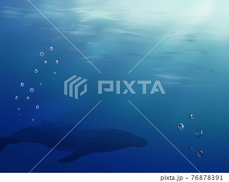 鯨のいる海の中のイラスト 76878391