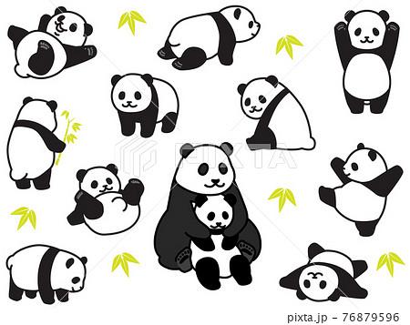 パンダのさまざまなポーズ 76879596