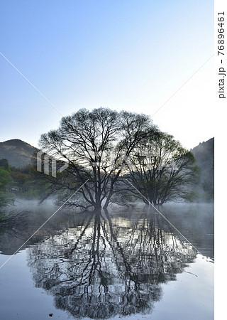 室生湖の霧 76896461