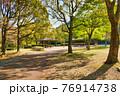 昼の太陽に照らされる木々と公園 76914738
