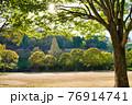 太陽に照らされる公園と木々 76914741