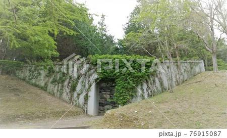 ツタの茂るトンネル 播磨中央公園 76915087