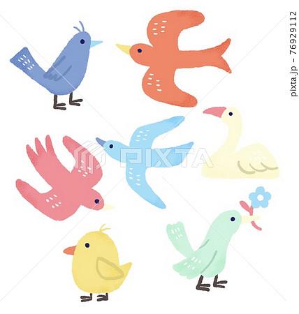 カラフルな鳥のイラスト素材セット 76929112