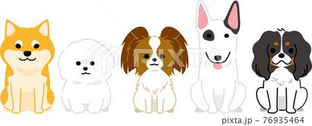 並んだ犬3 76935464