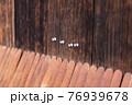 視線を感じる木目調の壁 76939678