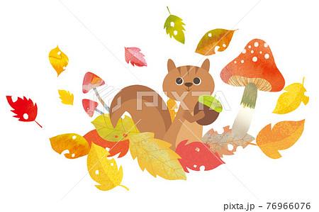 リスと秋の葉 76966076