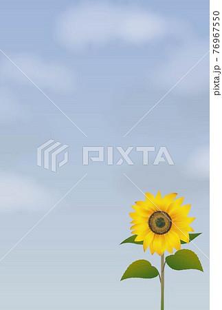 青空と向日葵のポストカード-縦 76967550