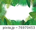 熱帯に茂る植物の葉のフレーム 76970453