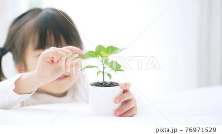 植物を見る女の子 環境イメージ 76971529