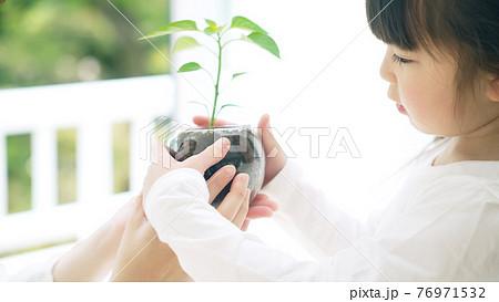 植物を見る女の子 環境イメージ 76971532