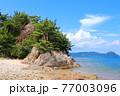 瀬戸内のハワイ、周防大島の浜辺から眺める夏の海と島 77003096