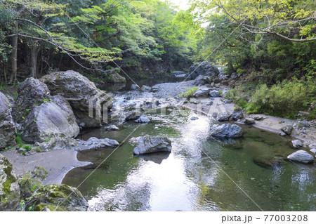 岩と砂地が在る渓流/入間川・吾妻峡(埼玉県飯能市) 77003208