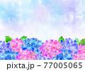 水彩 梅雨の紫陽花 背景フレーム 77005065