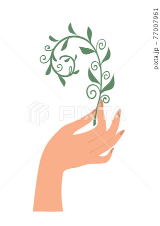 Hand holding a plant. Concept illustration of ecology, protecting the planet, healthy eating, meditation and massage emblem. Flat cartoon vector illustration isolated on white background. 77007961