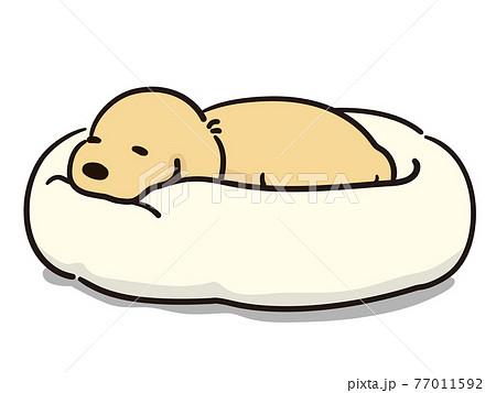 ペットベッドでリラックスをする犬 77011592