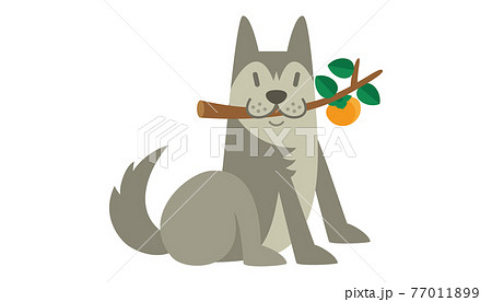 犬のイラスト いぬ イヌ dog 動物 ハスキー シベリアン・ハスキー アラスカン・マラミュート 77011899