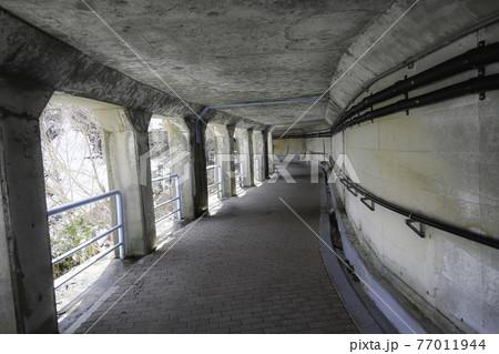 《富山県 立山黒部》黒部ダムの散策道 77011944