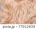 Blonde hair texture. Wavy long curly blond hair close up as background. Hair extensions, materials and cosmetics, hair care. Hairstyle, haircut or dying in salon. 77012639