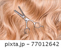 Hairdresser professional thinning scissors or shears on blonde curly hair as a background. Beauty salon, hair extensions and materials, hairdressing tools, hair care, new haircut concept. 77012642