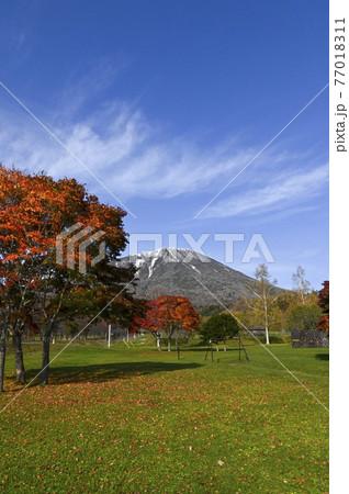 秋の羊蹄山 真狩 77018311
