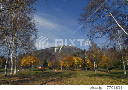 秋の羊蹄山 真狩 77018314