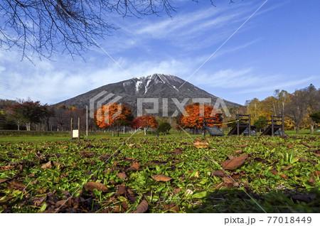 秋の羊蹄山 真狩 77018449