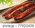 鰻の蒲焼 77022436