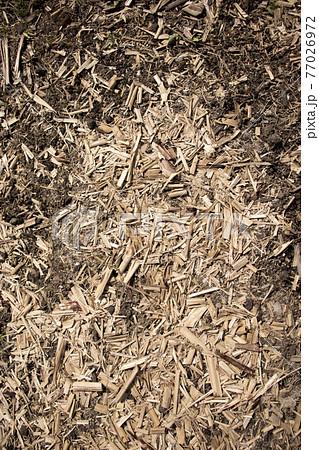 地面の上に木くずや枯れた植物がまかれている写真 77026972