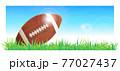 American Football Ball vector illustration 77027437