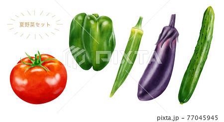 水彩イラスト 夏野菜セット 77045945