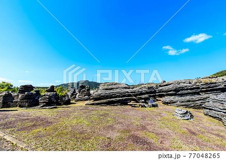 七ツ釜鍾乳洞の奇岩 化石の森 【長崎県西海市】 77048265