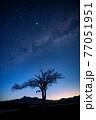 八ヶ岳高原野辺山の天の川と夏の星座と山梨の木の夜明け 77051951