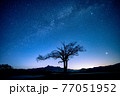 八ヶ岳高原野辺山の天の川と夏の星座と山梨の木の夜明け 77051952
