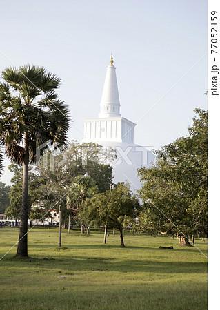 スリランカ ダゴバ 白い塔 77052159