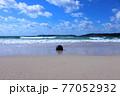 夏の角島 青い海と浜辺に打ち上げられたブイ 77052932