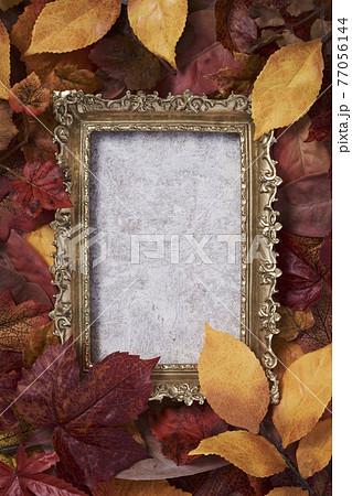 秋のイメージ 落葉と額縁 77056144