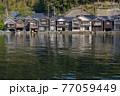 京都 伊根の舟屋(春)   77059449