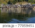 京都 伊根の舟屋(春)   77059451