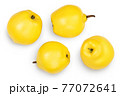 Fresh quince isolated on the white background with clipping path and full depth of field. Top view. Flat lay 77072641