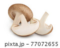 Fresh Shiitake mushroom isolated on white background with clipping path and full depth of field. 77072655