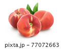 Ripe chinese flat peach fruit with leaf isolated on white background with clipping path and full depth of field 77072663