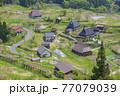 京都 世屋高原(春)  77079039