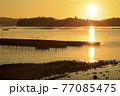 瀬戸内の夏の日の出の景色 牡蠣棚並ぶ海に伸びるサンロード 77085475