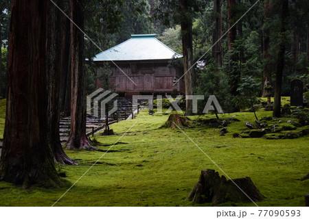 福井県勝山市にある平泉寺白山神社 雨上がりの拝殿と美しい苔 77090593